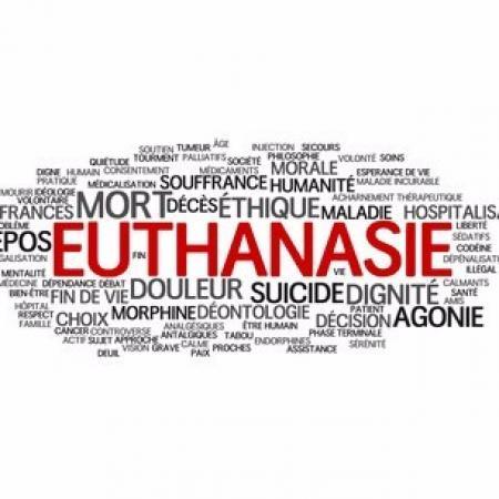 Les patients face à la fin de vie et à l'euthanasie : entre insuffisance législative et nécessité d'évolution